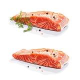 Salmon стейк с укропом изолировал иллюстрацию вектора нарисованную рукой Стоковые Изображения