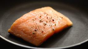 Salmon стейк сток-видео