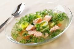 salmon суп Стоковое Изображение RF