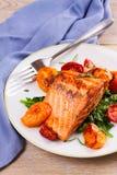 Salmon филе с шпинатом, томатами и травами Стоковое Изображение RF