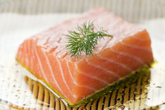Free Salmon Stock Images - 10379774