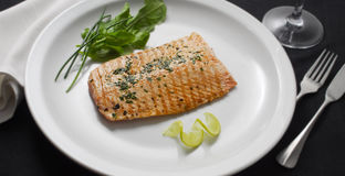 Salmon. Tasty dish and roast salmon fillet  with herbs Royalty Free Stock Image