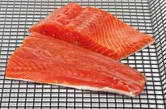 Salmon Stock Photo