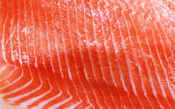 Salmon. Close up shot of salmon fish fillet Royalty Free Stock Images