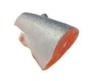 Salmon. Isolated on white background Stock Photo