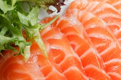Salmon. Pieces are more fresh red fish Royalty Free Stock Photos