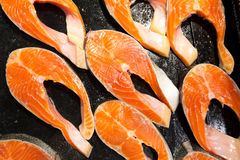 Salmon Royalty Free Stock Images