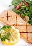 Salmon. Fresh cooked salmon fillet with arugula salad stock image