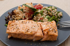 Salmon. Roasted salmon fillet with fresh green leaves salad and quinoa Royalty Free Stock Photos