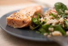 Salmon. Roasted salmon fillet with fresh green leaves salad and quinoa stock image