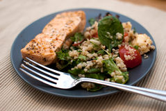 Salmon. Roasted salmon fillet with fresh green leaves salad and quinoa royalty free stock photo