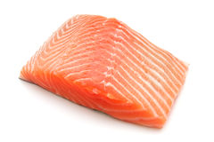 Salmon Stock Photos
