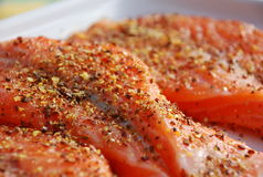 Salmon. Flavoured with hot spices royalty free stock image