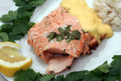 Salmon. Delicious salmon dish with rice on a white plate royalty free stock image