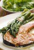 Salmon Stock Photos