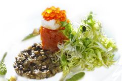 Salmon appetizer with caviar and mushrooms Stock Images