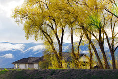 Salmon Arm, Canada Stock Photo