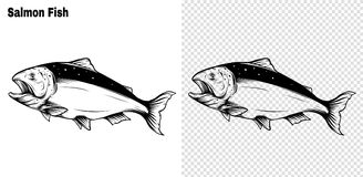 Salmon art highly detailed in line art style.Fish vector by hand drawing. royalty free illustration