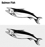 Salmon art highly detailed in line art style.Fish vector by hand drawing. Fish tattoo on white background.Black and white fish vector on white background.Salmon Stock Photos