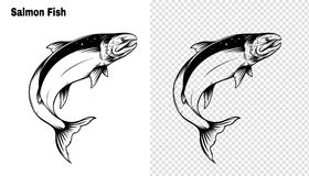 Salmon art highly detailed in line art style.Fish vector by hand drawing. Fish tattoo on white background.Black and white fish vector on white background.Salmon Stock Photography