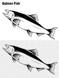 Salmon art highly detailed in line art style.Fish vector by hand drawing. Fish tattoo on white background.Black and white fish vector on white background.Salmon Royalty Free Stock Photos