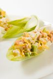 Salmon and avocado salad in chicory leaves. Mixed salmon and avocado salad in chicory leaves on the white plate royalty free stock photography