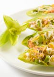 Salmon and avocado salad in chicory leaves Royalty Free Stock Photo