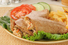 Salmon avocado wraps with tomatoes and cucumbers Stock Image