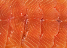 Salmon background. A few slices of a salted salmon Royalty Free Stock Photography