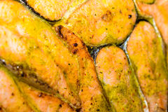 Salmon baking dish Stock Photos