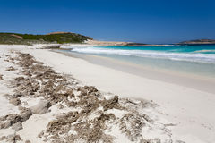 Salmon Beach Esperance Royalty Free Stock Photos
