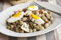 Salmon, bean and egg salad Royalty Free Stock Image