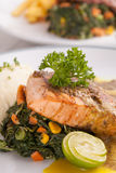 Salmon and beef steak Stock Photography