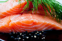Salmon with black pepper and dill on plate Royalty Free Stock Image