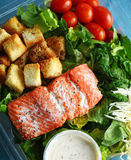 Salmon box lunch Stock Photography