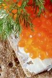 Salmon on bread Stock Photos