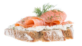 Salmon on a bread against white Royalty Free Stock Photo