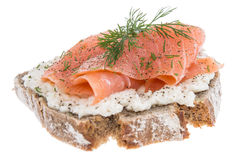 Salmon on a bread against white royalty free stock photos