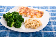Salmon Broccoli and Brown Rice Stock Photography