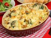 Salmon & Broccoli Pasta Bake. Rigatoni pasta with salmon and broccoli in a cheese sauce Royalty Free Stock Images