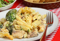 Salmon & Broccoli Pasta Bake. Rigatoni pasta with salmon & broccoli baked in a cheese sauce Stock Image