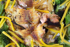Salmon Broccoli With Shredded Cheddar ost arkivfoton