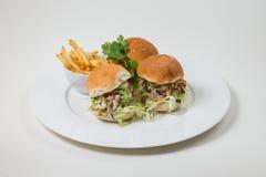 Salmon Burger en gebraden gerechten op een witte plaat op een witte achtergrond royalty-vrije stock foto