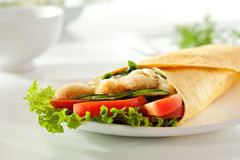 Salmon Burrito Royalty Free Stock Photography
