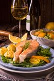 Salmon with butter fried potato puree and salad Stock Photography