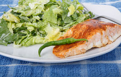 Salmon and Caesar with Pepper Stock Photography