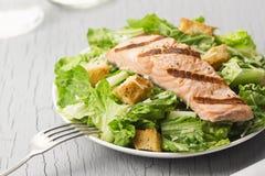 Salmon Caesar Salad arrostito con i crostini ed il parmigiano Fotografia Stock Libera da Diritti