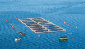Salmon cages on islands in southern Chile Royalty Free Stock Image