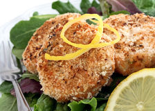 Salmon cakes appetizer Royalty Free Stock Photography