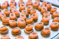 Salmon appetizers. Salmon canape with herbs on a buffet table Royalty Free Stock Photography